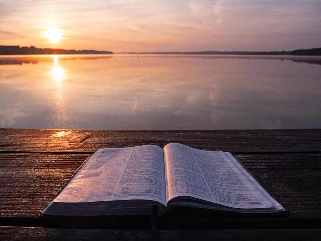 Bíblia - Elementos do Curso - Crescendo na Vida e na Fé